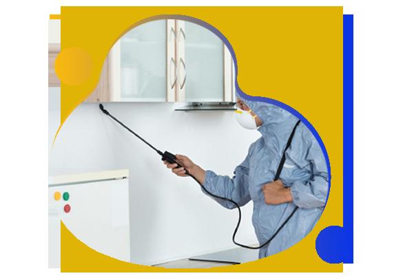 Professional Pest Control Garran
